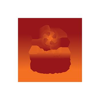 logo Yoga Alliance USA