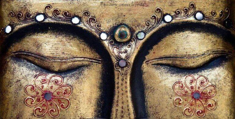 Meditazione Vipassana Goenka MappaMundi Yoga Padova