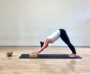 ADHO MUKHA SVANASANAi MappaMundi Yoga Padova
