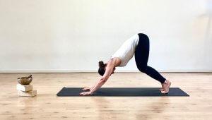 Gatto MappaMundi Tutorial Yoga Preparazione per Adho Mukha Svanasana